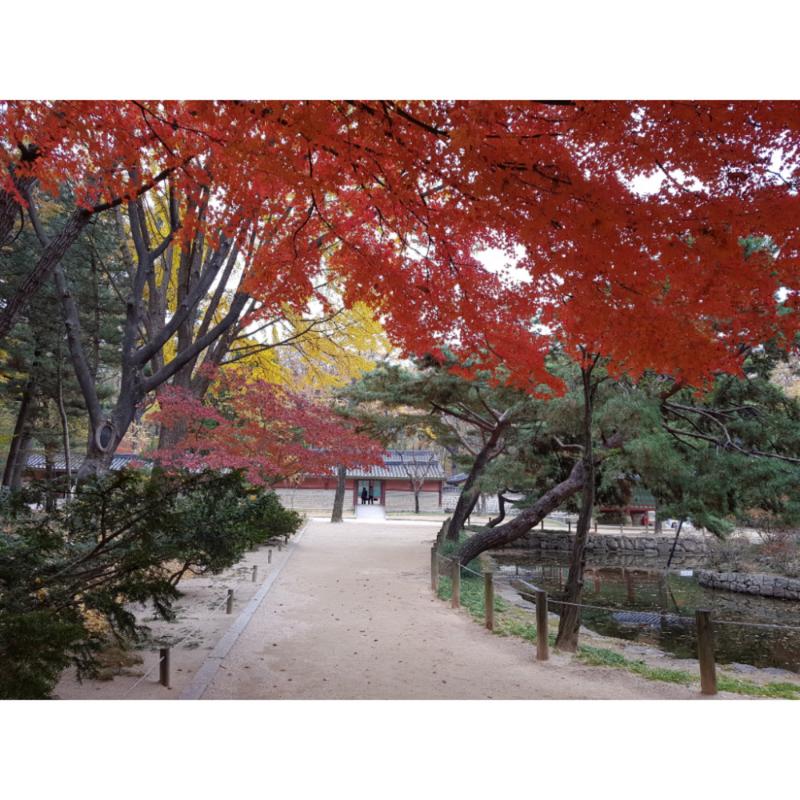 종묘(서울.. : 종묘(서울) 스케치판 ,sketchpan
