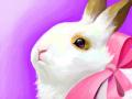 pink bunny : 토끼,흰토끼,토끼귀,리본,손가락관절에 쥐나도록 스케치판 ,sketchpan