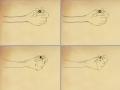 거미! : 거미! 스케치판 ,sketchpan
