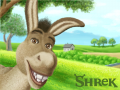 Donkey : 중셉입니다. 스케치판 ,sketchpan