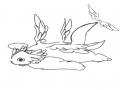 라파엘 : 라파엘 스케치판,sketchpan