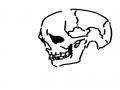뼉다구잘그.. : 뼉다구잘그리고싶다 스케치판 ,sketchpan