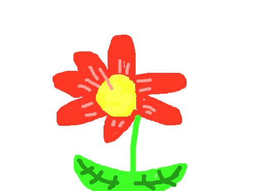 빨간꽃-고태관- : 빨간 꽃 입니다 스케치판 ,sketchpan