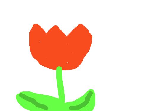 튤립-고태관- : 튤립을 그렷다. 스케치판 ,sketchpan