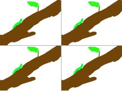 애벌래 : 뭐긴뭐야 애벌래 , 스케치판,sketchpan,손님