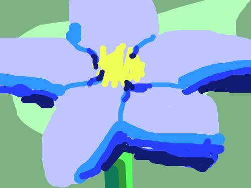 꽃꽃꽃 : ㅎㅇㅎㅇㅎㅇㅎㅇㅎㅇㅇㅎㅇㅎㅇㅎㅇㅎㅇㅎㅇㅎㅇㅎㅇㅎㅇ 스케치판 ,sketchpan