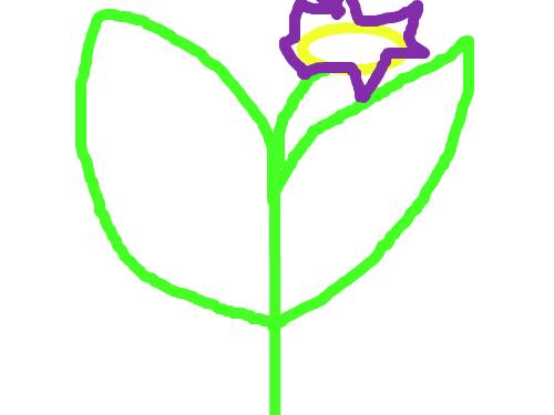 샛삭5 : dsfhgdxfh 스케치판 ,sketchpan