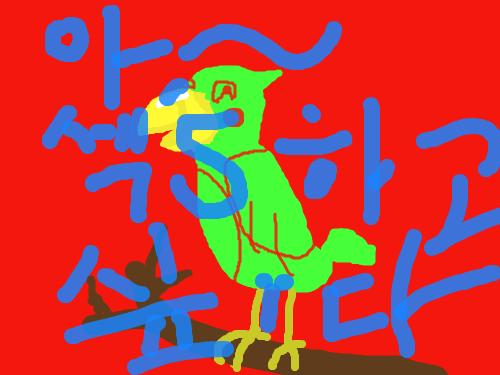 색무새 : 아~~ 난 앵무새야 스케치판 ,sketchpan