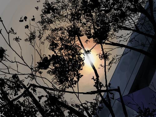 그냥.... : 나무를 가르는 강한 빛 스케치판 ,sketchpan