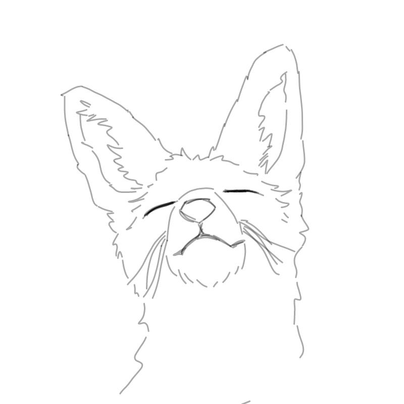 여우 : 여우 스케치판 ,sketchpan