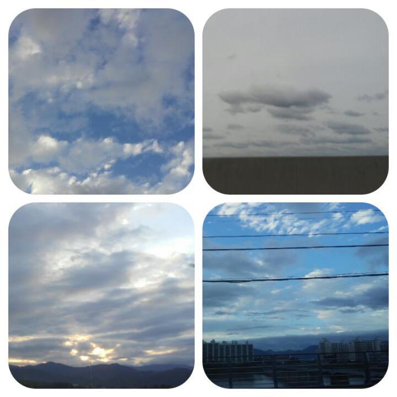 다 오늘,,,.. : 다 오늘,,,아니 새벽이니까 어제 찍은것들.. 낮에 하늘 짱이뻤음ㅠㅠ 스케치판 ,sketchpan