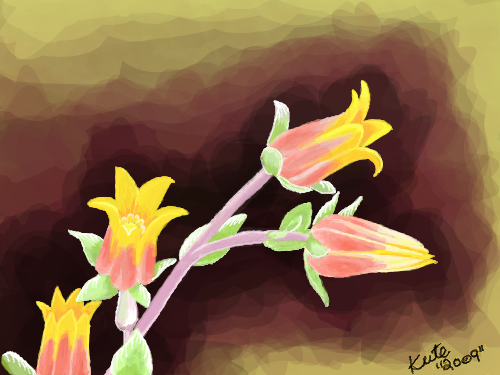 Peach and Yellow Flowers : Liked the combo of the pastel pink stems and the mixture of yellow and pink petals. 스케치판 ,sketchpan