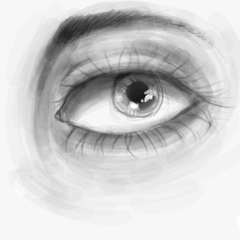 눈 처음그.. : 눈 처음그린다 스케치판 ,sketchpan
