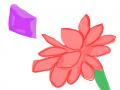 꽃그리기 .. : 꽃그리기 완료!! 스케치판,sketchpan