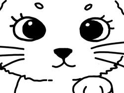 고양이의 얼굴 : 고양이의 얼굴 예쁘게 칠해 보아용 , 스케치판,sketchpan,스케치판