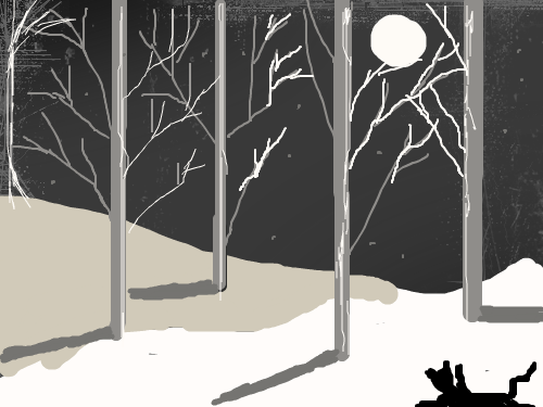 cool kitty : cat playing in the snow at night 스케치판 ,sketchpan