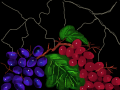 GRAPES : GRAPES AGAINST MARBLE WALL 스케치판 ,sketchpan