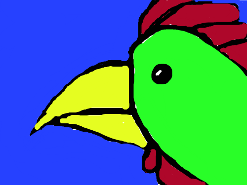 rooster : rooster 스케치판 ,sketchpan