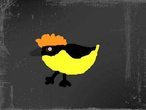 birdie : xsadasdasdasdasda 스케치판 ,sketchpan